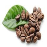 walnut estate stay
